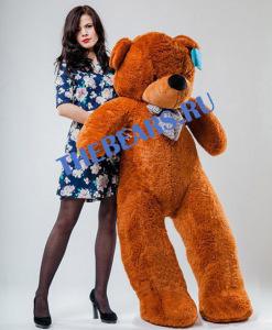 """""""большие медведи в Самаре"""""""